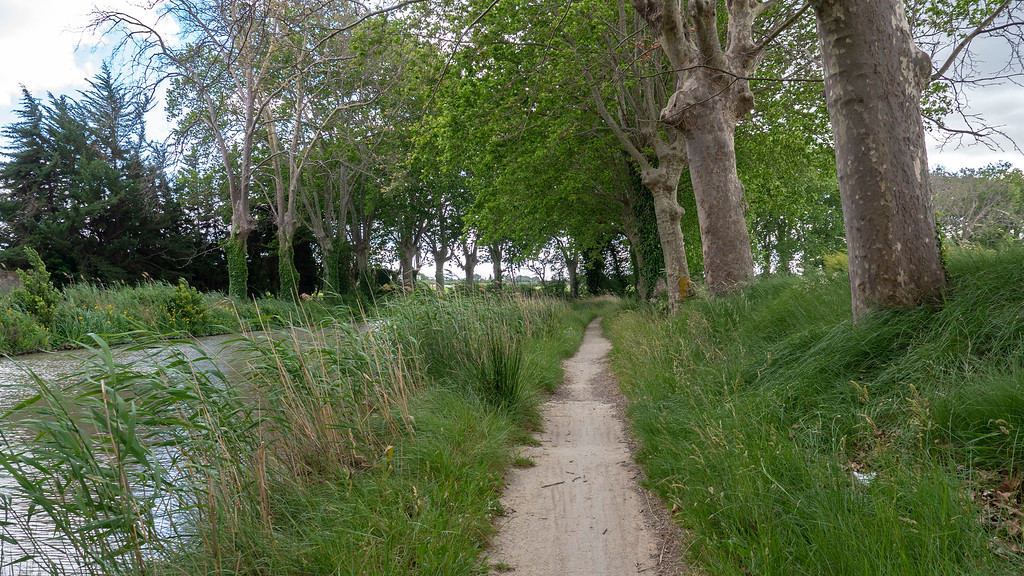 Paths along the Canal du Midi, a UNESCO World Heritage Site in the South of France