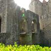 Arles_2012 06_4493463