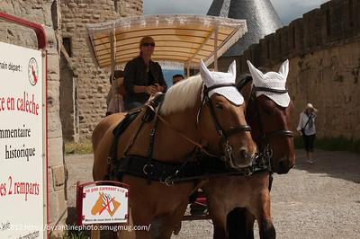 2012-0610 035 Carcassonne