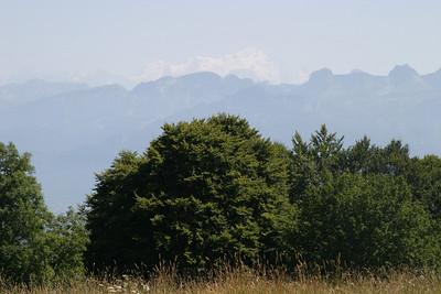 Mont Blanc from Salève.