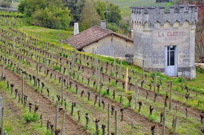Saint-Emilion - Au cœur des vignes