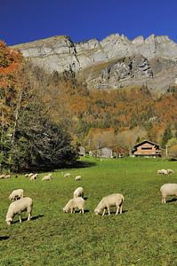 Les Mattelons (commune de Sixt-Fer-à-Cheval)