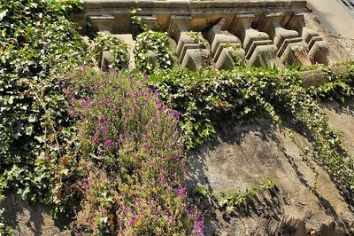 Dole - Canal des Tanneurs - Au plus près de la pierre