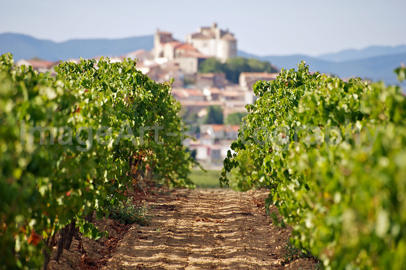 Puissalicon in the Herault region of France