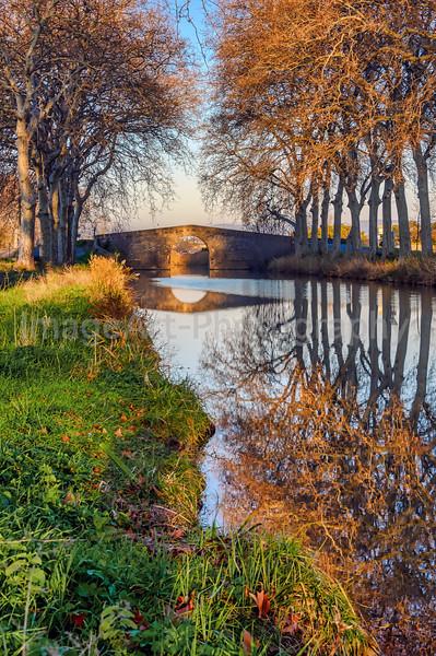 Canal du Midi near Cers, Herault