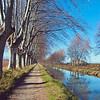 Footpath along the Canal du Midi, France
