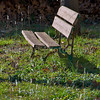 A park bench in a rural setting