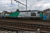 467494-0_c_un270_AntwerpBerchum_Belgium_29072013