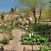 Cardaillac - Au jardin médiéval