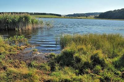Plateau de l'Aubrac - Lac de Salhiens