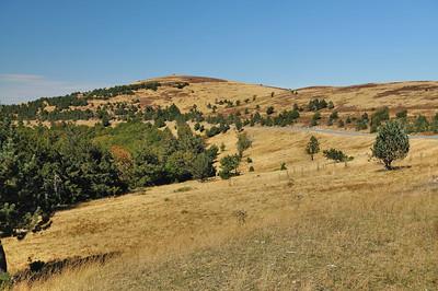 Au voisinage du mont Aigoual, le Portalet