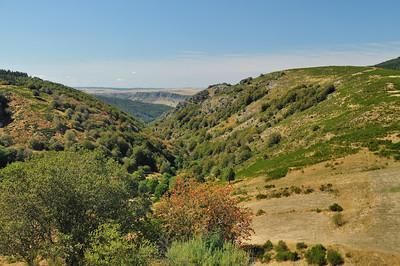 Entre le mont Aigoual et le col de Perjuret