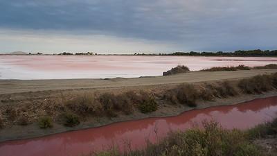 Marais salants, Aigues-Mortes, Camargue, France