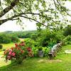 Sarlat_2012 06_4493872