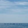 Nice_2012 06_4493050