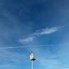 Nice_2012 06_4493036