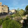 Nice_2012 06_4493028