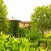 Arles_2012 06_4493343
