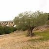 Arles_2012 06_4493352