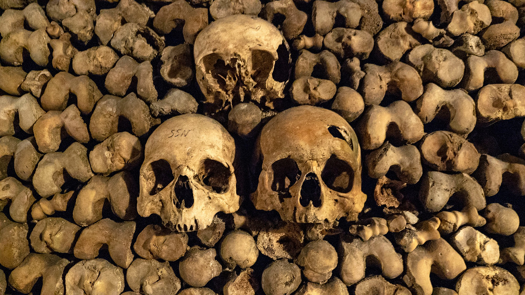 Paris Catacombs Tour - Visit the Catacombs of Paris, France - Skulls