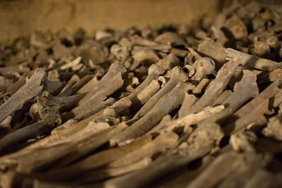 Sea of bones in the Paris Catacombs