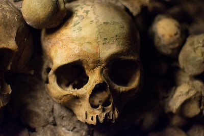 Staring skull in the Paris Catacombs