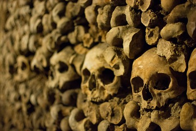 Lined up skulls and other bones in the Paris Catacombs