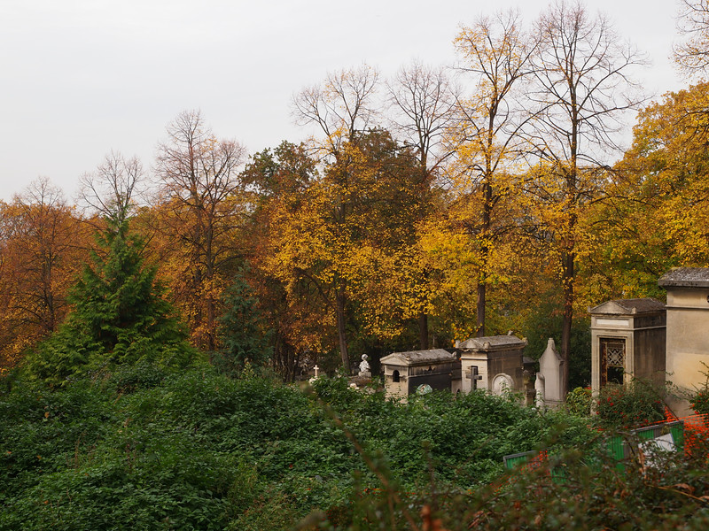 """Fall colors at the Père Lachaise Cemetery in Paris, France. <a href=""""http://en.wikipedia.org/wiki/P%C3%A8re_Lachaise_Cemetery"""">http://en.wikipedia.org/wiki/P%C3%A8re_Lachaise_Cemetery</a>"""
