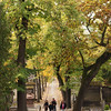 "Fall colors at the Père Lachaise Cemetery in Paris, France. <a href=""http://en.wikipedia.org/wiki/P%C3%A8re_Lachaise_Cemetery"">http://en.wikipedia.org/wiki/P%C3%A8re_Lachaise_Cemetery</a>"