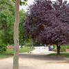 Paris_2012 06_4494387