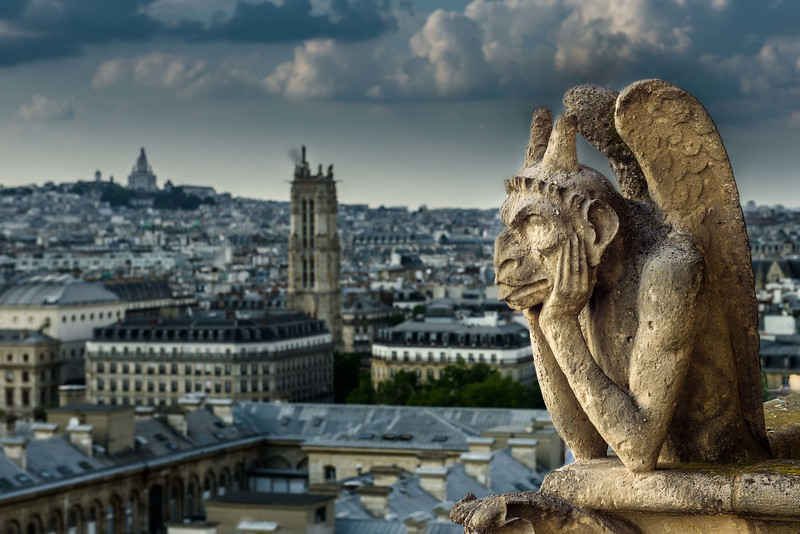 The Gargoyle of Notre Dame