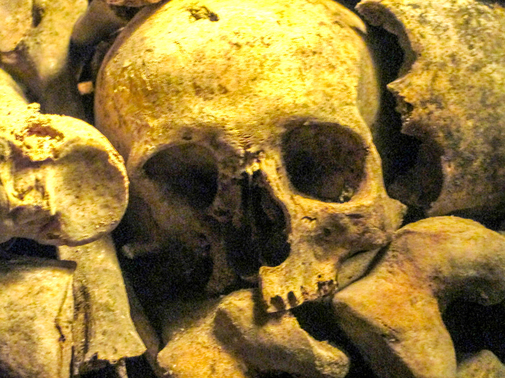 paris catacombs pictures