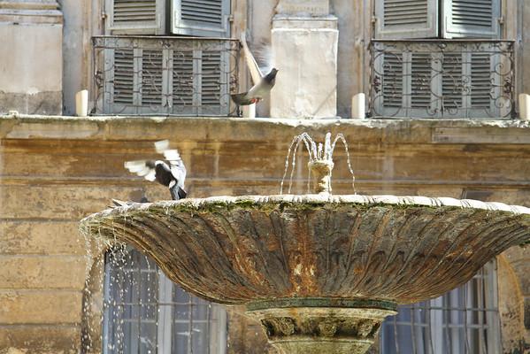June, 2010 Provence