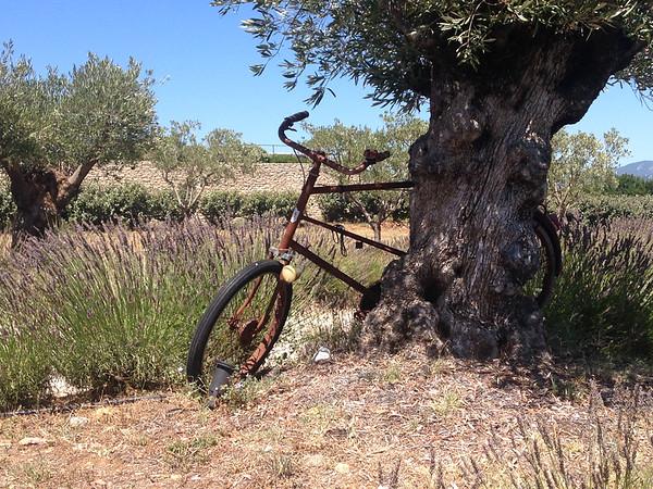 Provence Explorer 07/09/17
