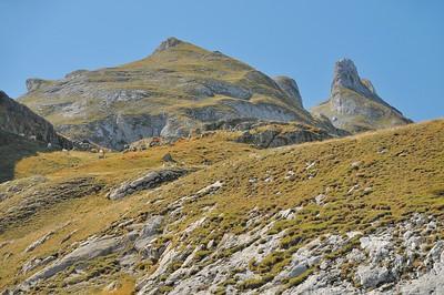 Au voisinage du col du Pourtalet (1.794 m)