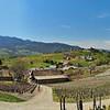 Les vignes de Chignin et la Chartreuse avec le Mont Granier et le Mont Joigny