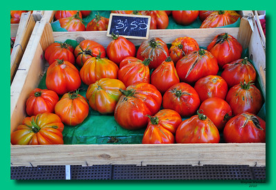 Vence_Home-grown_tomatoes_D3S0333