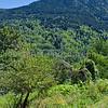 Montsegur Scenery