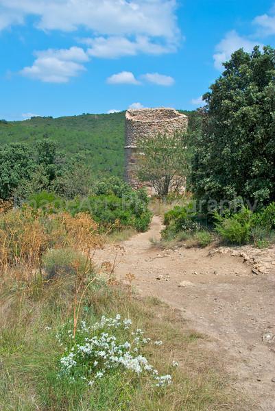 The Roman Tower