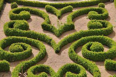 Lautrec - Jardin de l'ancien couvent des Bénédictines