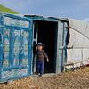 Oscar discovering the yurts of Alpage de la Peule