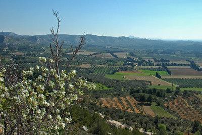 Provence Les Baux de Provence 04