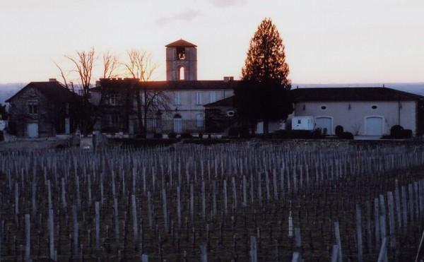 St  Emilion Vineyard 02