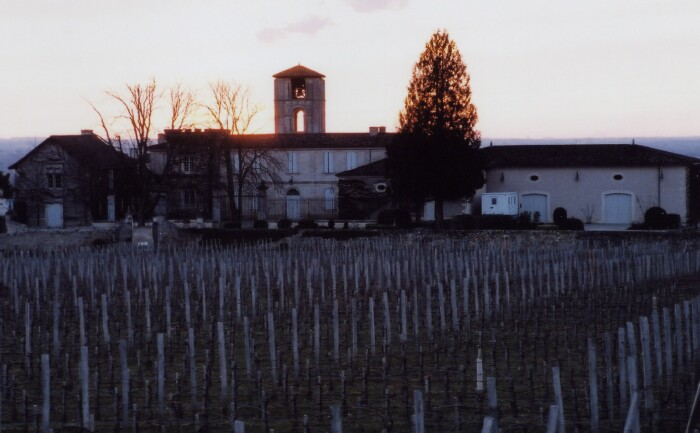 St  Emilion Vineyard 02