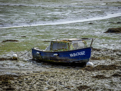 Little Boat in Low Tide - Conleau France