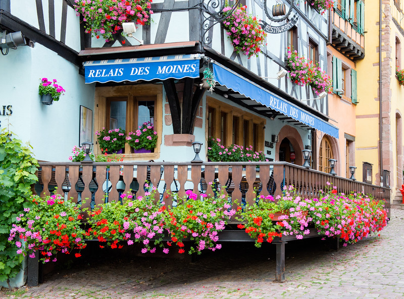 Riquewihr in Bloom