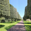 Topiary trees cast shadows on the garden path at the American World War II Cemetery in Colleville-sur-Mer, Normandy, France
