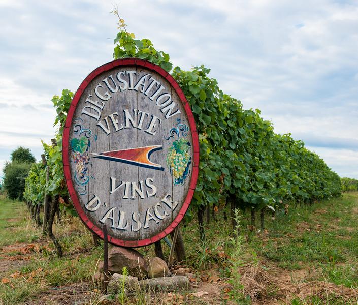 Alsacian Vines