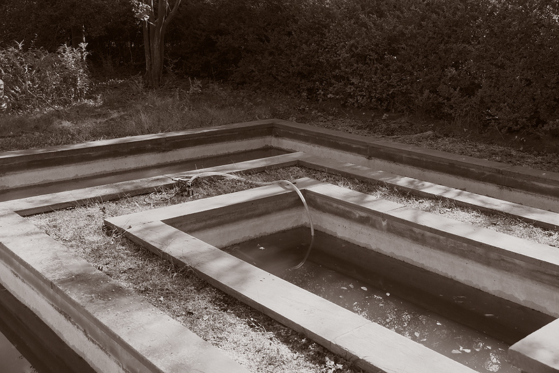 Gary_Beeber_abandoned pool