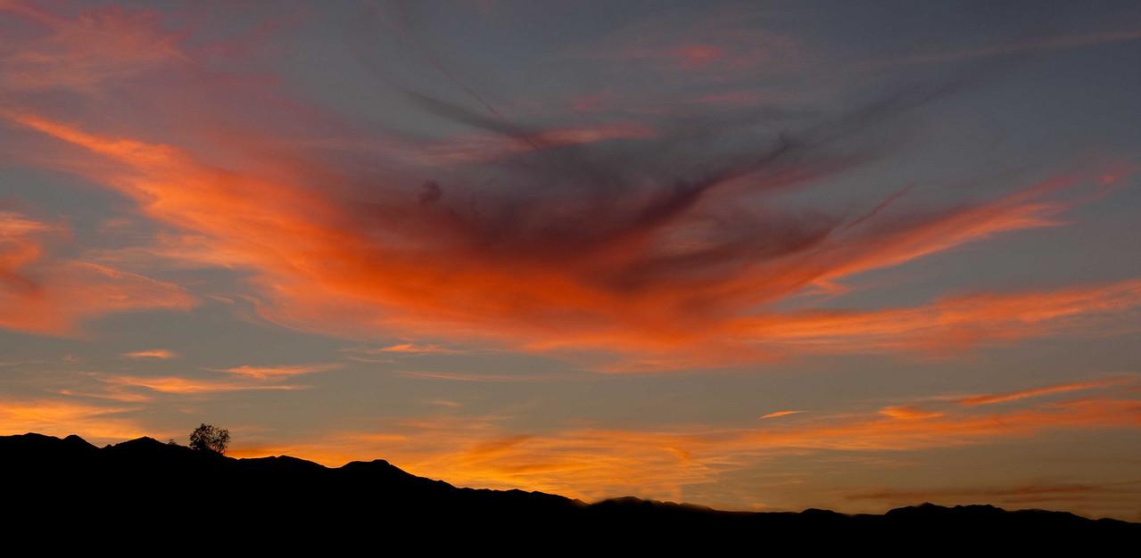 Sunset Needles CA December 8, 2010.
